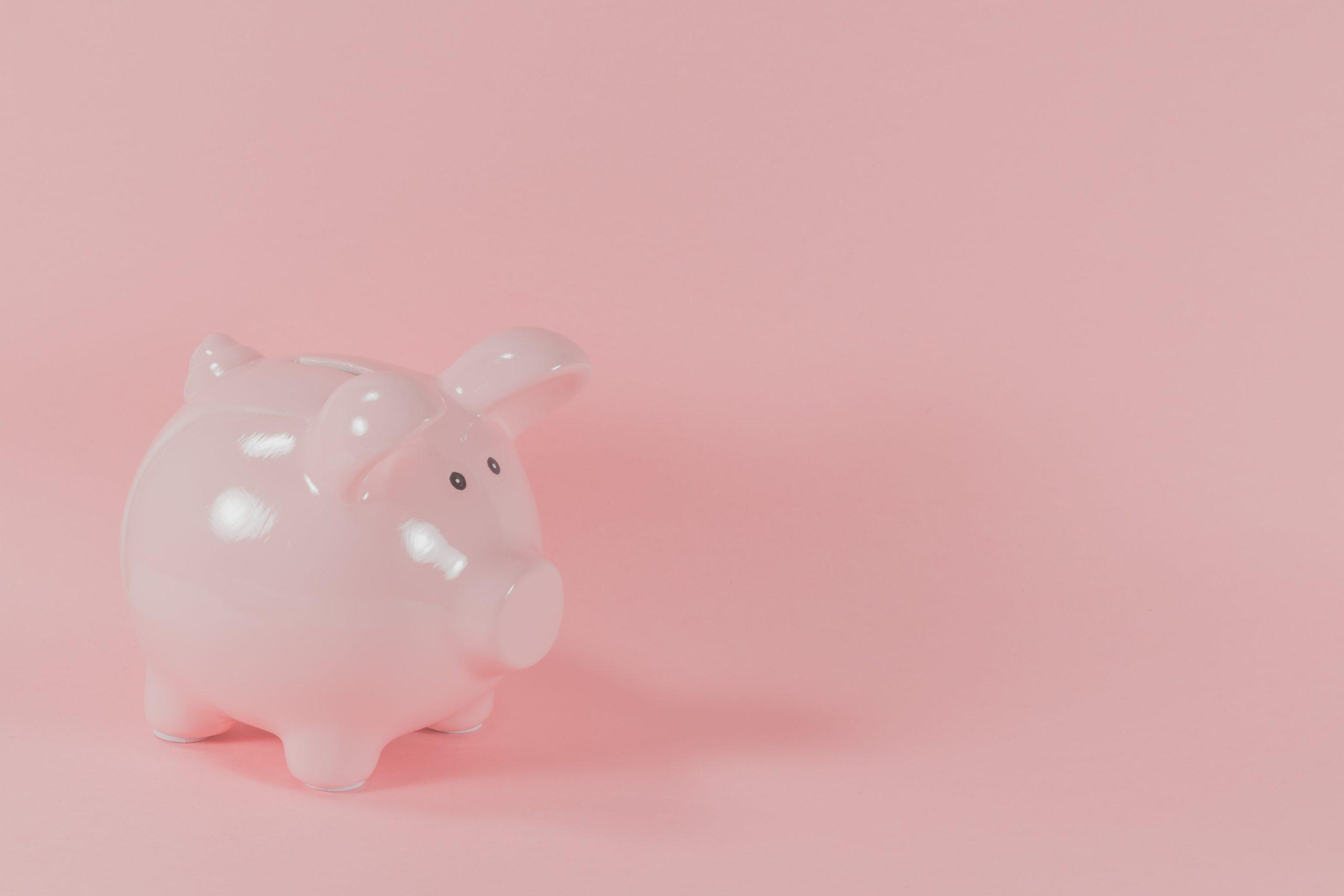 Piggy Bank - VWV Plus